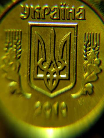 Braccia macro dell`Ucraina №29427