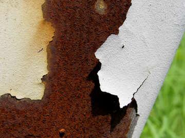 Paint rust №29008
