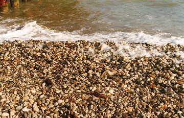 Crimean pebbles on the beach №29246