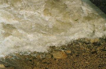 Sea foam №29153
