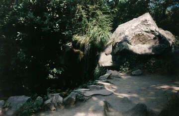 Trail №29256