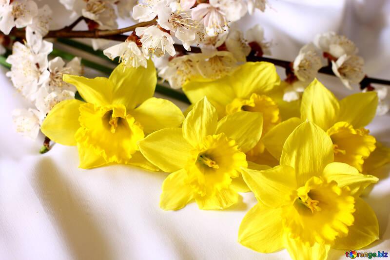 Bouquet di primavera №29972