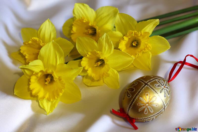 Daffodils and Easter egg №29984