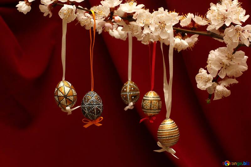 Пасхальные яйца на ветке №29848