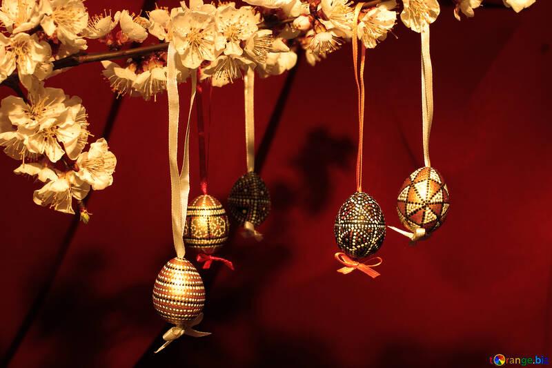 Easter eggs on tree №29849