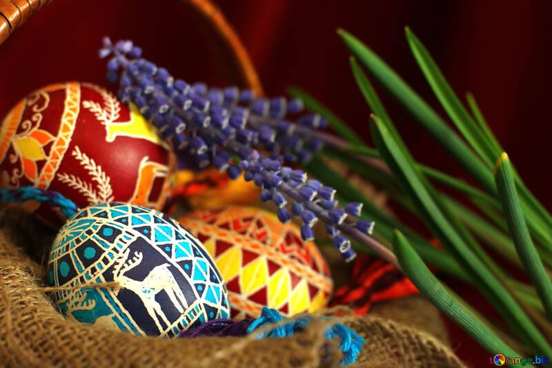 Colored eggs №29753