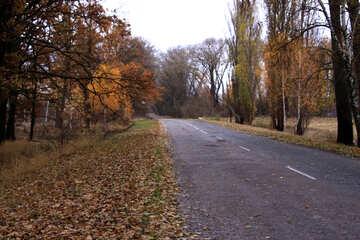 Strada   torsione №3510