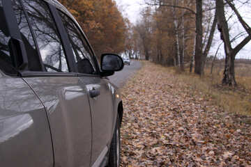 Car  at  sidelines №3515