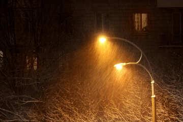 Inverno nella città №3459