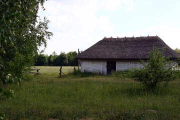 Halle  zu  Viehbestand №3139