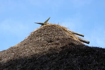 Thatched roof №3290