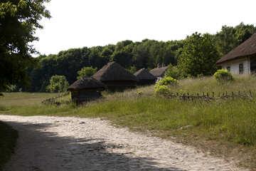 Oldest settlement №3297