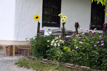 Flower garden near the house  №3137