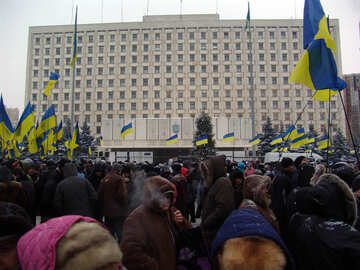 The protesters were supporters of the Party of Regions in Kiev №3551