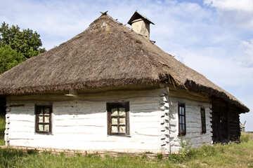 Mud hut №3302
