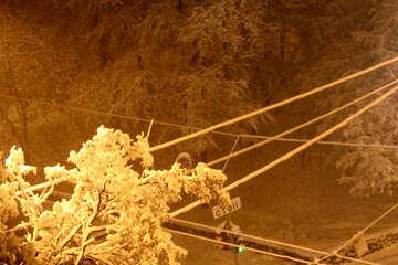 Night snow №3432