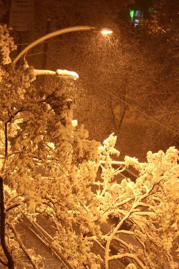 lantern and snow  №3476
