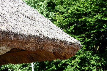 natural roofing material. Reed . №3127