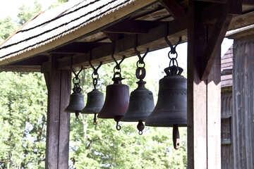 Ringing №3180