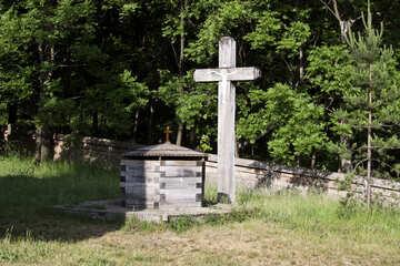 Una santa fuente №3154