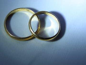 Los anillos de boda №3660