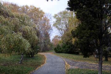 Park path №3343