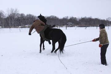 Всадник падает с коня в снег №3954