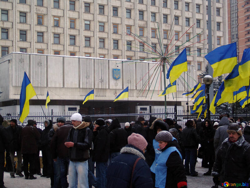 Election of the President 2010. Yanukovych`s supporters under the CEC №3558