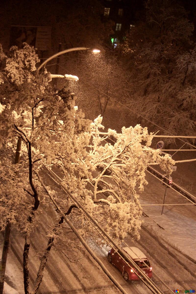 Brings down snow №3478