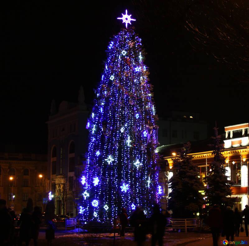 tree christmas  №3400