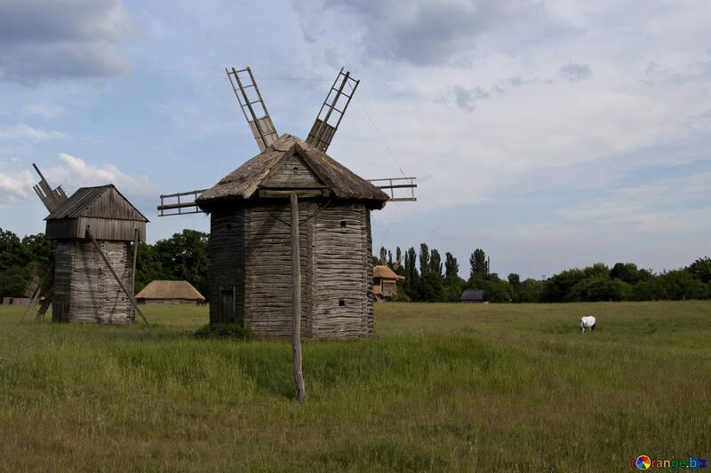 Windmills  №3280