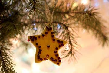 Stella di Natale №30988