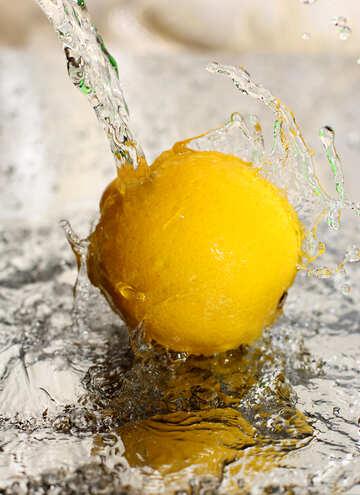 The freshness of lemon №30860