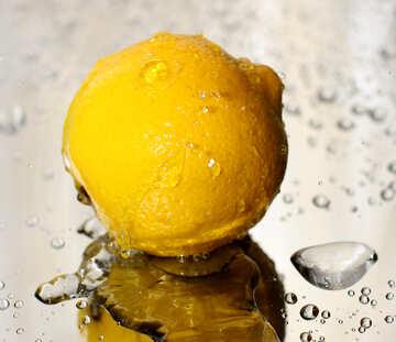 Lemon №30865
