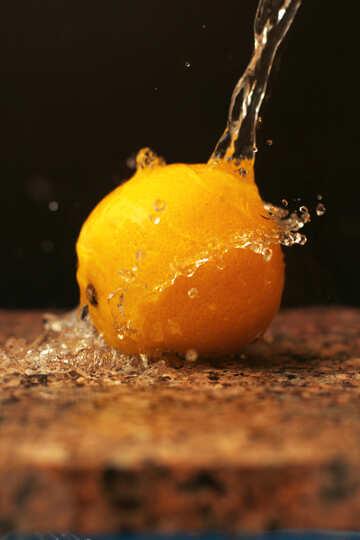 Lemon №30870