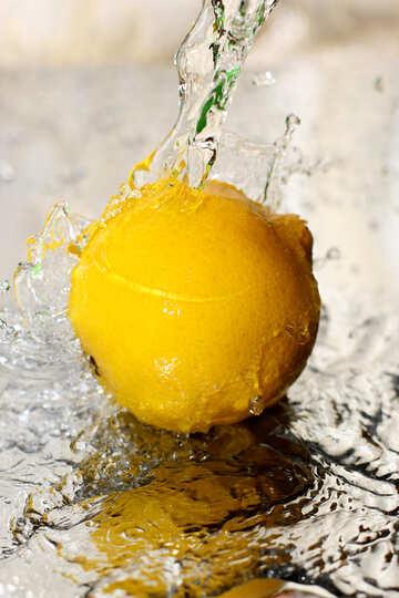 Lemonade №30859