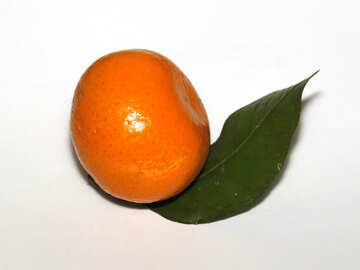 Mandarin №30344