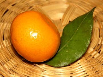 Mandarin in basket №30345