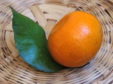 Mandarin with leaf №30346