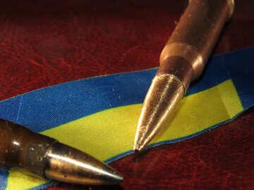 The war for Ukraine №30472