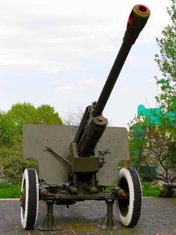 Cannon №30742