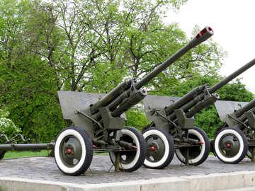 Guns in military museum №30745