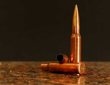 Bullets №30466