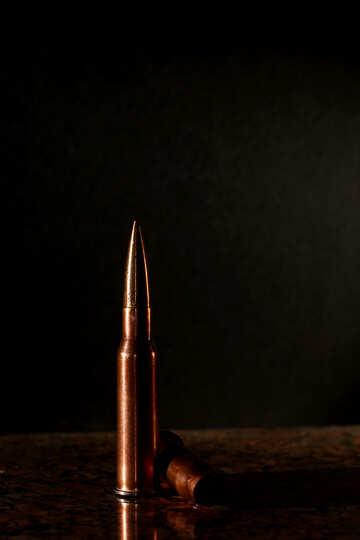 Gun cartridge №30457