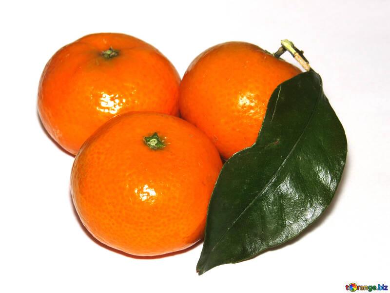 Mandarins №30342