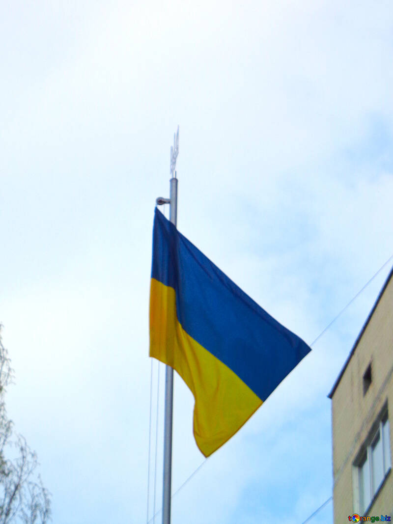 The Flag Of Ukraine №30425