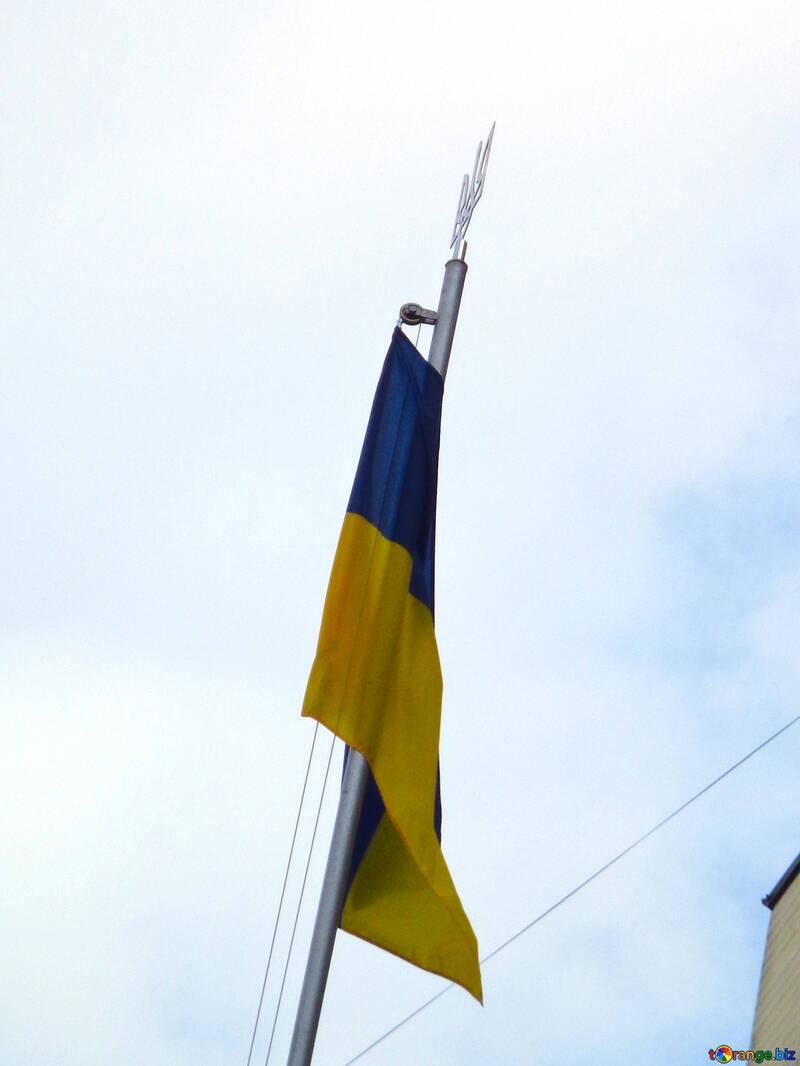 Украинский флаг с гербом №30426
