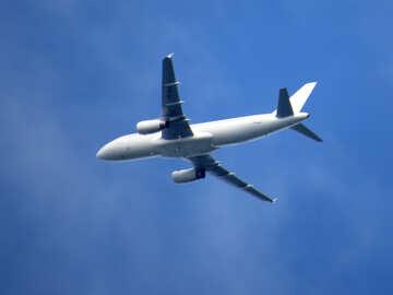 Flight №31676
