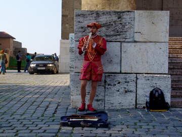 Street musician №31855