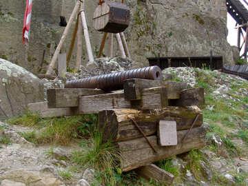Vecchio cannone №31788